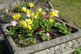 2017. 03. 26 - Holy Trinity garden (PL) (3) - Copy