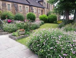2018. 06. 10 - Holy Trinity garden